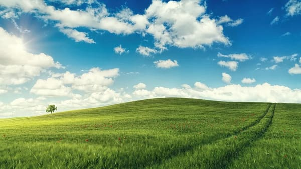 天気の良い日の画像