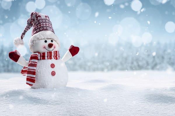 冬の雪だるまの画像