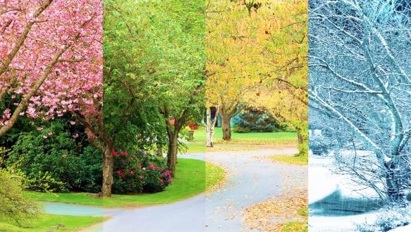 四季の画像
