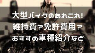 大型バイクのあれこれページのタイトル画像